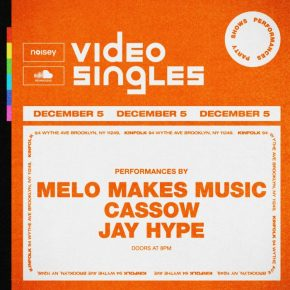 VIDEO SINGLES PARTY