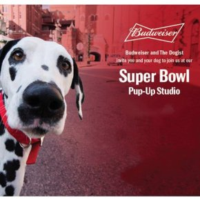 BUDWEISER SUPER BOWL PUP-UP